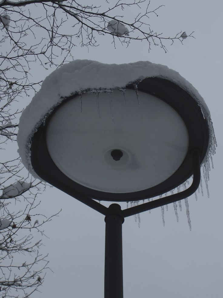 Lamp with snow @Hirschgarten Munich