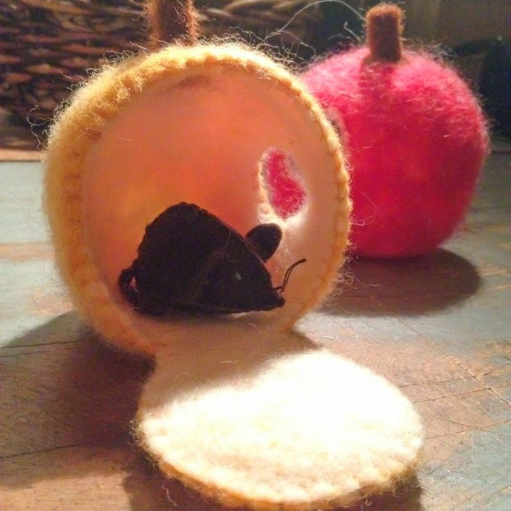 WillywamWhimsy Natural Learning Blog: autumn crafts wet felting over apples!