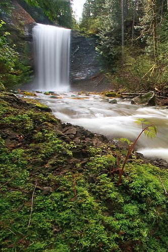 Ammonite Falls by LoCoPixel, via Flickr Ammonite Falls, Benson Creek Falls Regional Park, Nanaimo, Vancouver Island, BC, Canada. Doumont Rd access just steps away from our campsite (more challenging) and Jameson Rd access also close by for an easier hike. Brannenlake.com #explorenanaimo