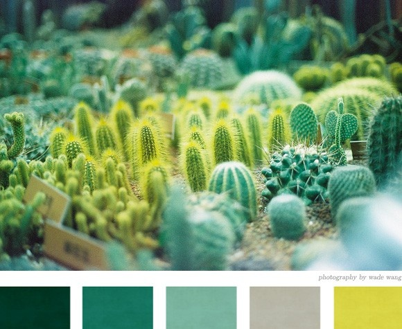 forest, teal,jade, gray, chartreuse, color palette