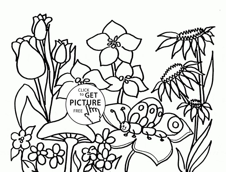 Coloring Pages Of Flowers For Free : 73 best flower coloring pages images on pinterest