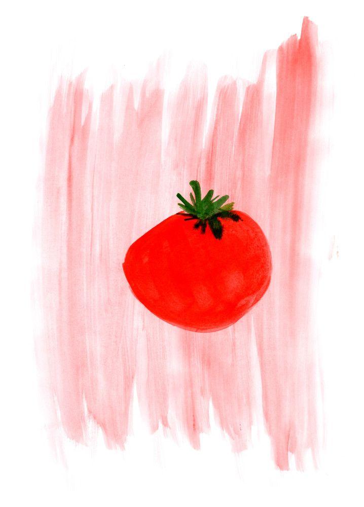 #tomato #tomatoes #watercolour #watercolor #illustration #foodprint #foodart #prints #art #print #pomodoro