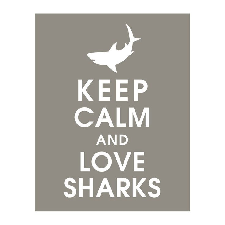Keep Calm and LOVE SHARKS, 11x14 Print featured in Gravel) Buy 3 get 1 FREE  Keep Calm Art Keep Calm Poster. $14.95, via Etsy.