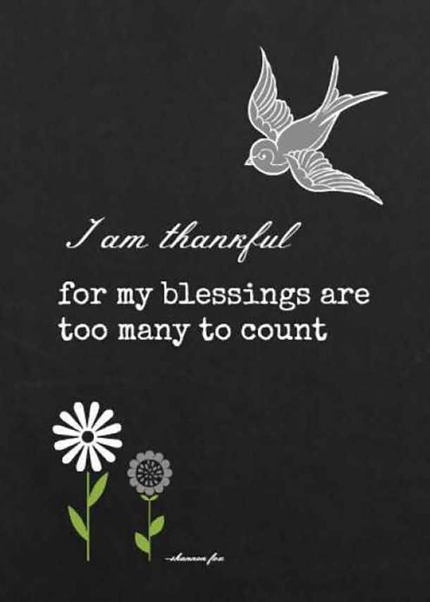 I am thankful for my blessings are too many to count.""