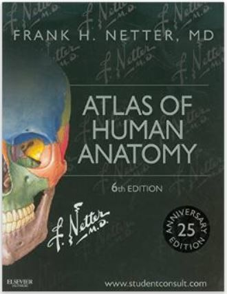 gray's anatomy review book free