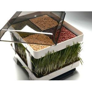 Germinator manual Lexen pentru culturi de germeni si ierburi. Magazin online cu aparate profesionale de bucatarie, germinator lexen, seminte germinare.