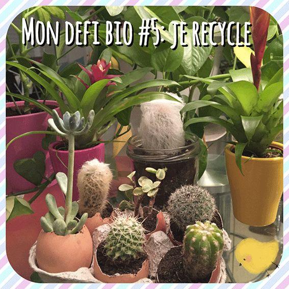 idée décor pour créer un petit jardin à la maison quand on a pas de balcon  sans dépenser d'argent