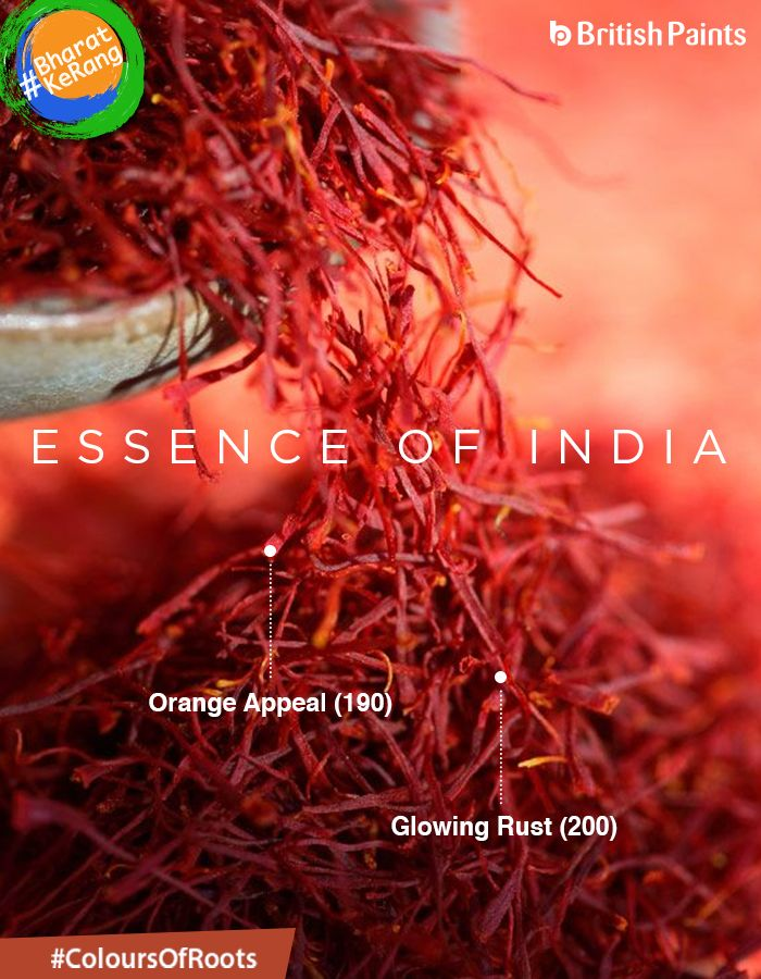 Rooted into the traditions and culture of India, Kesar (Saffron) is the true essence of our country. It is known for it's beautiful colour and aroma. #ColoursOfRoots.