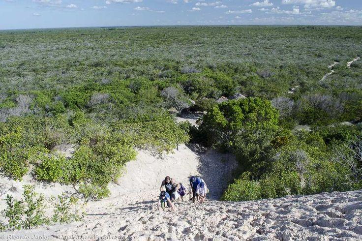 A imensidão verde que faz 'divisa' com as imensas dunas do Parque Nacional dos Lençóis Maranhenses, caminho a Lagoa Bonita. Conheça >>> http://www.guiaviagensbrasil.com/ma/lencois-maranhenses/
