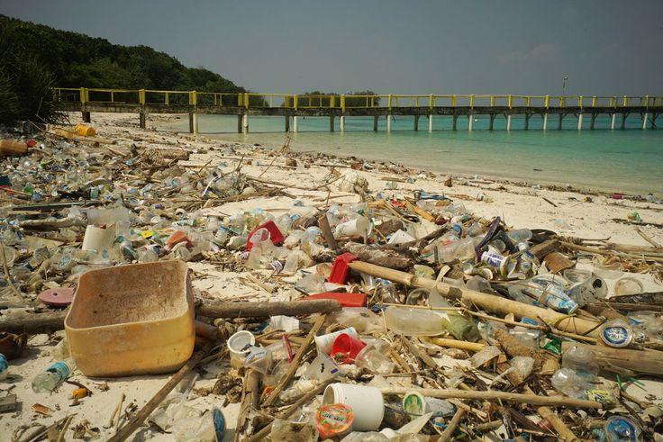 El plástico, la huella más duradera de la humanidad – Español