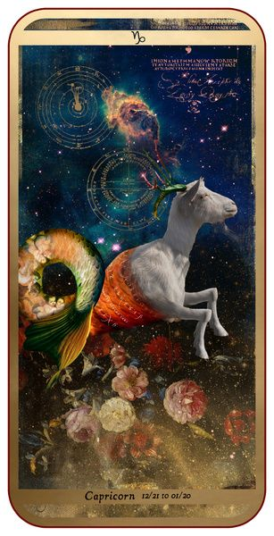 AstroSpirit / Capricorn ♑ / Earth / The Goat / Capricorne