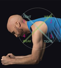 Fix the Slouch - 4 Poses for Upper Crossed Syndrome: corpse pose, upward plank pose prep, cow face pose, warrior II.