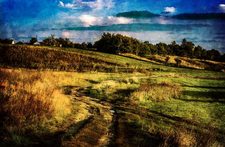 countryside by Nikoletta Kolozs