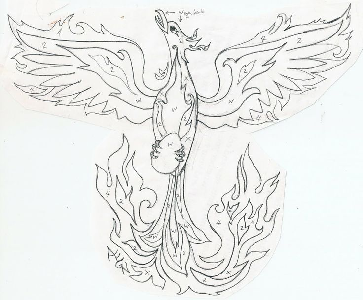 coloring pages of phoenix - photo#17