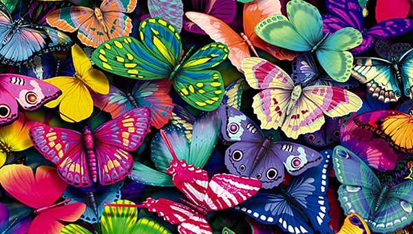 Ultra Hd 4k Abstract Wallpapers Desktop Backgrounds Preview Butterfly Wallpaper Colorful Butterflies Butterfly Painting