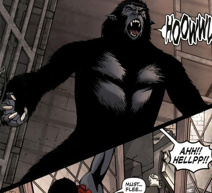 Henry McCOY   Earth 311   PORTFOLIO: Marvel 1602