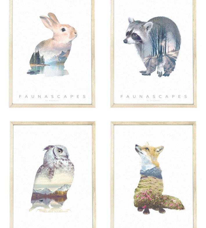 4 Faunascape posters (raccoon, fox, rabbit, and owl) by WhatWeDo. Printed on Cyclus Offset which is an uncoated, natural white recycled offset paper that is eco and FSC certified. Packed in a triangular tube with image of posters on front. (excl. frame).  Size: 42 x 30 cm