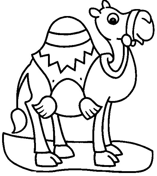57 best cats images on pinterest kids net camels and camel for Camel coloring page