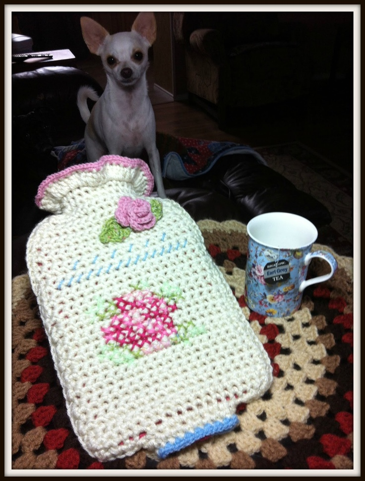 30 Best Crochet Hot Water Bottle Covers Images On Pinterest Water
