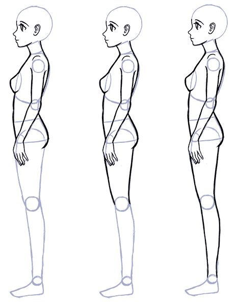 Side Of Body Drawing