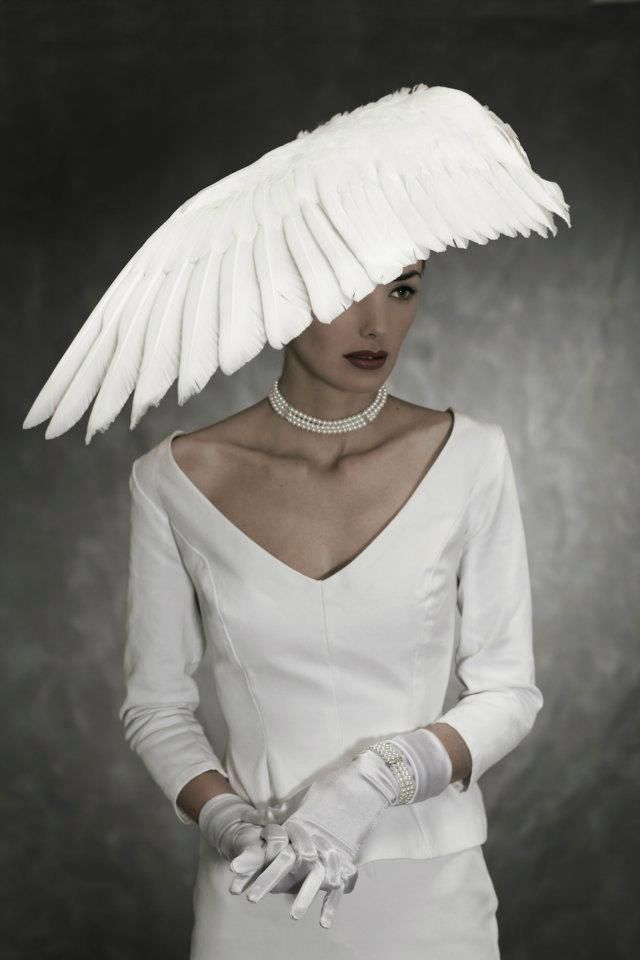 37 best images about taxidermy birds on pinterest for Angel wings wedding dress