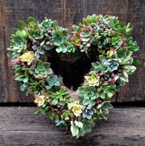 "15"" Living Succulent Heart Wreath- The perfect Valentine's Day Present,  Birthday Present,  Anniversary Gift, Wedding Decoration and more on Etsy, $100.00"