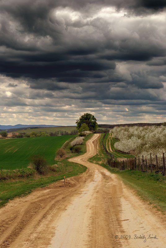 Hungary Landscape
