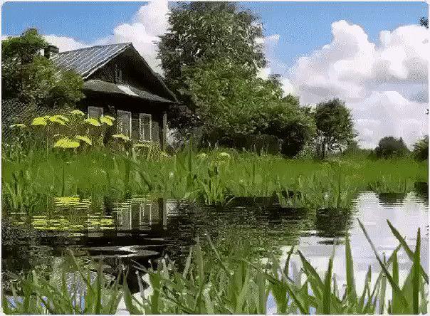 анимационные картинки природа деревня