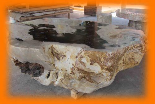 IndoGemstone Fossil Stone Table