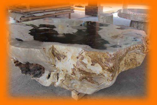 IndoGemstone Fossil Stone Table