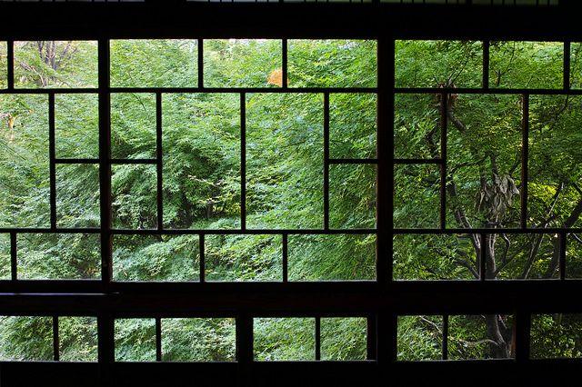 Green window by nipomen2, via Flickr