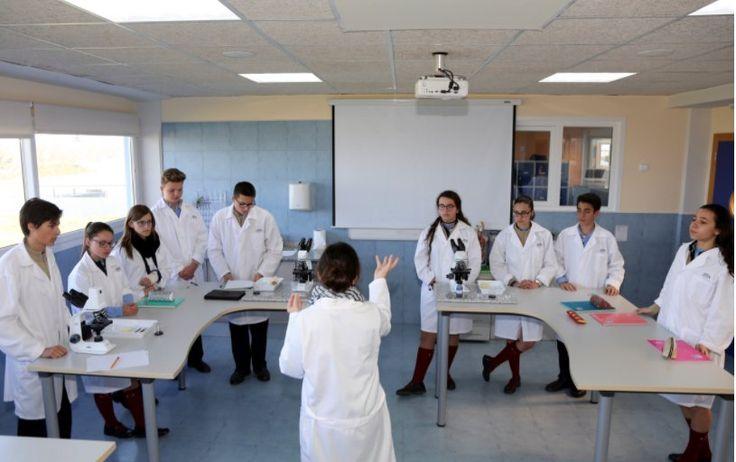 En el blog de #ColegiosISP encontraréis las fotografías que recogen los diferentes experimentos realizados por el alumnado de #SecundariaISP en el #LaboratorioISP durante el segundo trimestre. Enlace: http://colegiosisp.com/practicas-laboratorio-secundaria/