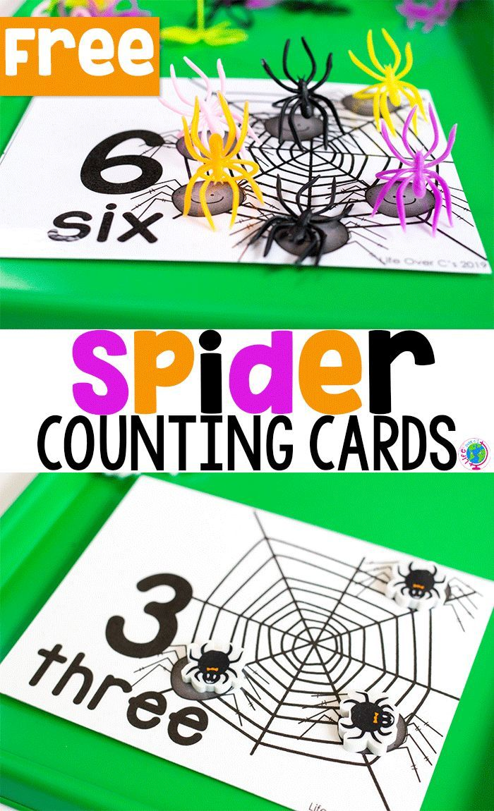 Creepy, crawlie spider counting!