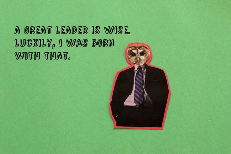Owl is a wise leader indeed.