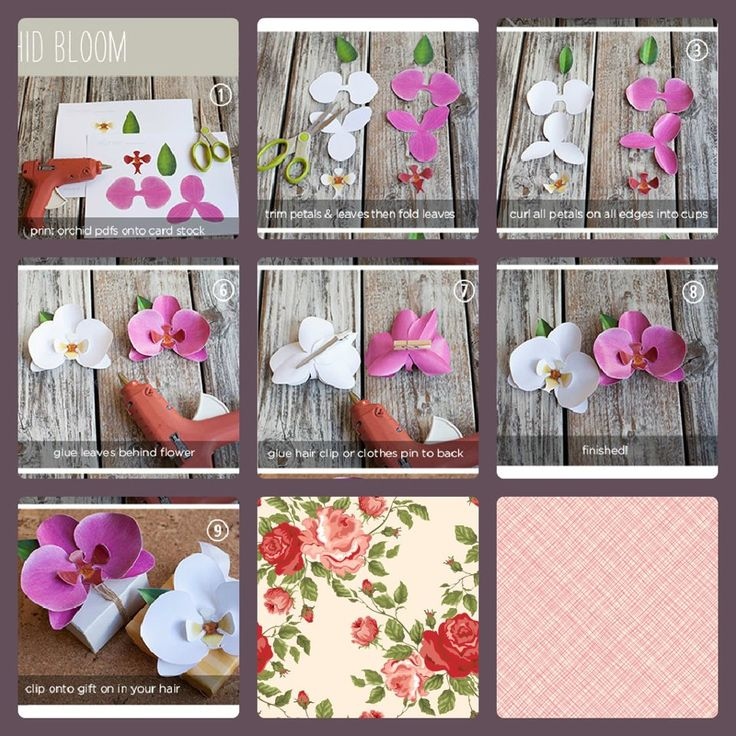 papírové orchidejky