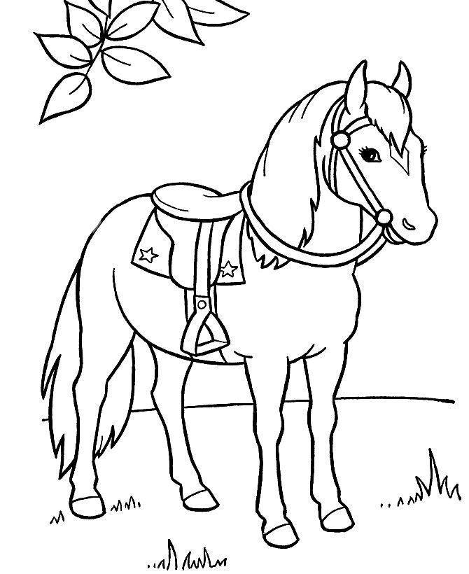 Dibujo de caballos para imprimir y colorear (4 de 12) | mildibujos.com