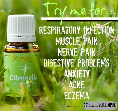 Young Living's Citronella.  Try me for respiratory infection, muscle pain, nerve pain, digestive problems, anxiety, acne, eczema.  Heartfelt Hullabaloo
