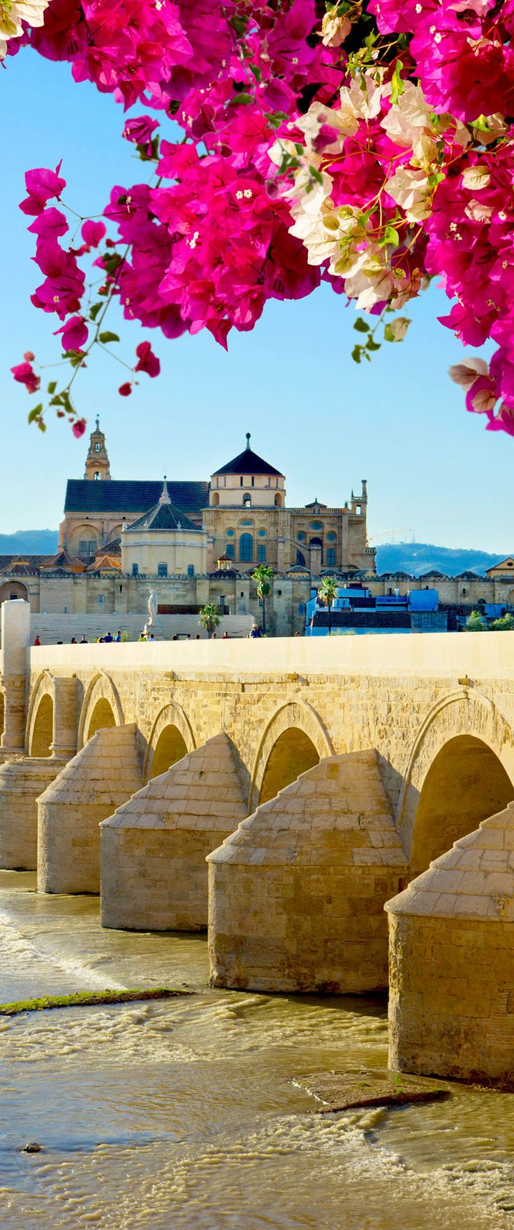 Old cathedral and roman bridge, Cordoba, Andalusia, Spain
