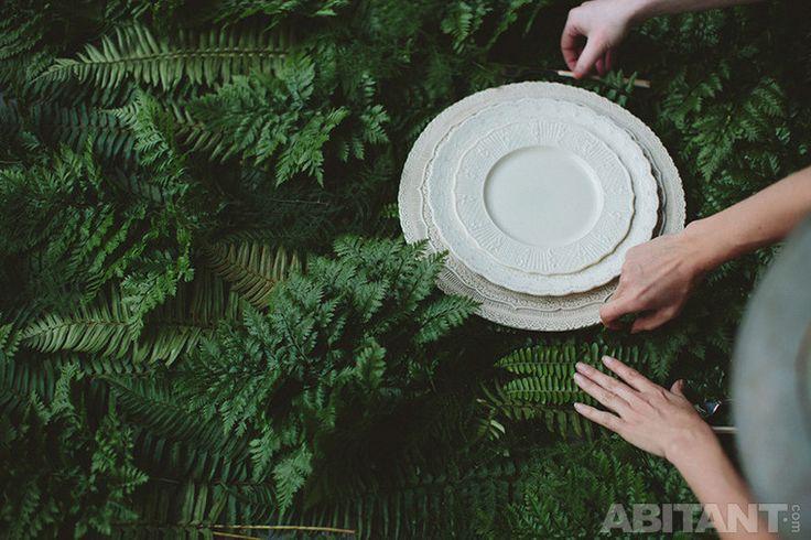 Белые тарелки на фоне зеленых листьев
