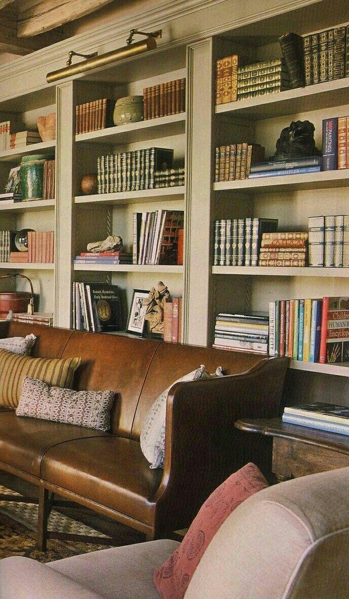 Nice home library