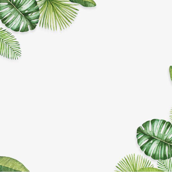 Material De Decoracion De Fondo De Hoja Hojas Verdes Hojas De Banana Verde Png Y Psd Para Descargar Gratis Pngtree Leaf Background Palm Background Leaf Border