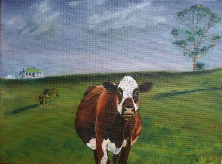 Thought Cow. Oil on canvas, Denmark WA