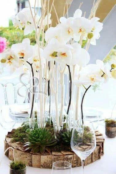 Centrotavola con orchidee bianche, sughero e piante grasse. Eleganza e modernità natural chic.