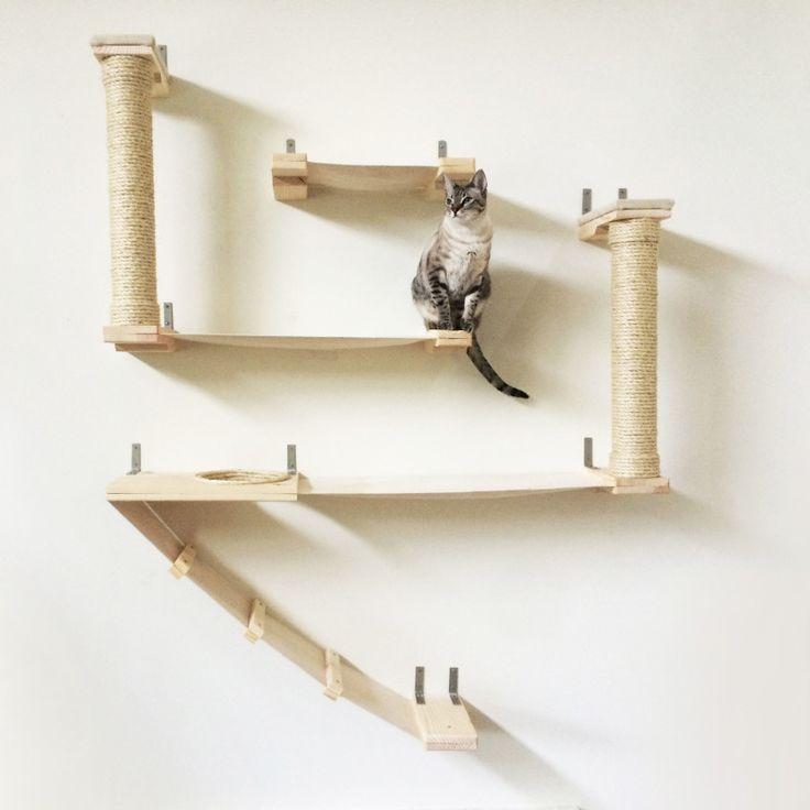 Ber ideen zu katzen wandregale auf pinterest - Ovale wandregale ...