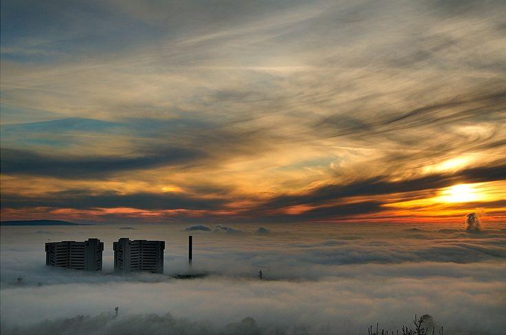 nebbia su trieste