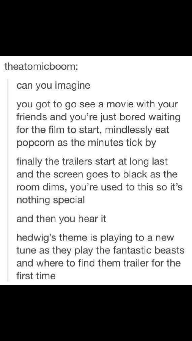 """Fantastic Beasts and Where to Find Them - THIS LITERALLY HAPPENED YESTERDAY EXCEPT THE GUY WAS QUIETLY SAYING """"LUMOS"""" AND I SHRIEKED LIKE BELLATRIX LESTRANGE"""