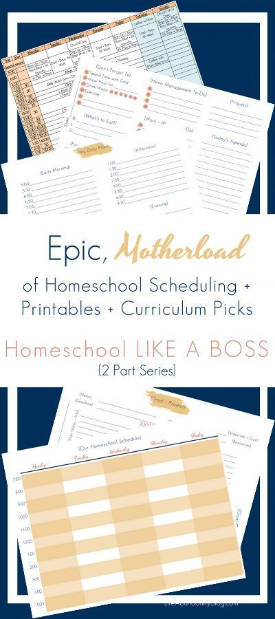 Best 25+ Curriculum ideas on Pinterest Cv template, Curriculum - cv templates word