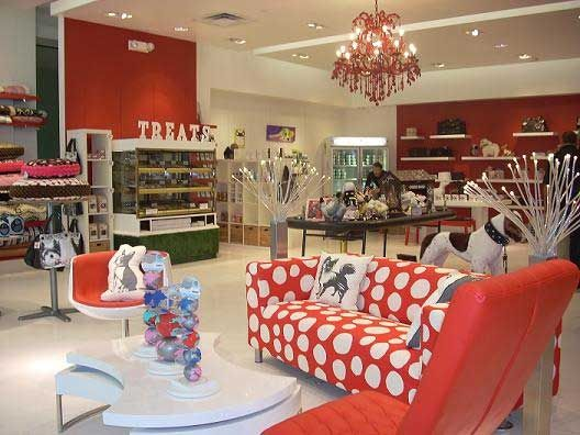 Pet store design las vegas both pets and pet owners for 5 paws hotel salon