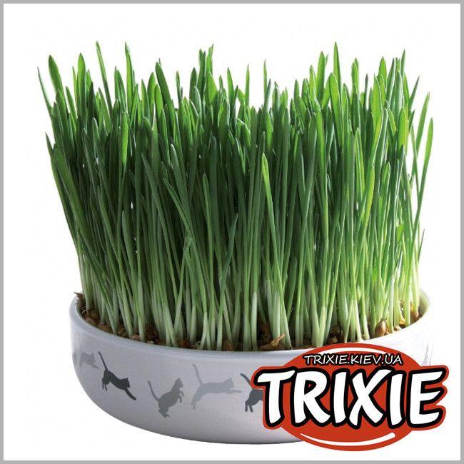 ТРИКСИ Украина - Миска для травы + семена TRIXIE
