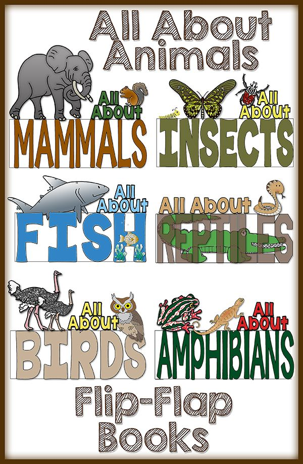 Do you teach about Animal Classifications?  If so, this is the RESOURCE for you!  These flip-flap books are a wonderful way for your students to practice their research skills and expository writing!   $